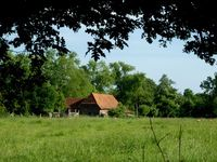 Bauernhof (Symbolbild)