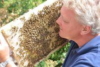 """Derzeit boomt die Imkerei wie schon lange nicht mehr. Der Grund: Bienen fäszinieren. / """"Umwelt - Biene - Honig: Wir wollen es - natürlich!"""" / Deutsche Imkereien laden zum Besuch ein / Bild: """"obs/Deutscher Imkerbund e. V./Lothar Rühl"""""""