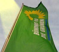 Bündnis 90 / Die Grünen Flagge