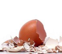 Eierschalen sind der Rohstoff für Elektroden. Bild: murdoch.edu.au