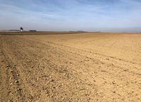 Agrarwüste in Deutschland: Dank jahrzentelanger trockenlegung von Wasserspeichern (Moore, Sümpfe, Auen) ist nun oft zu wenig Wasser in der Landschaft (Symbolbild)