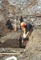 Bergung eines Ölschieferblocks im Gelände, der für die zeitlich hochauflösende Untersuchung genutzt wurde. Quelle: © Senckenberg (idw)