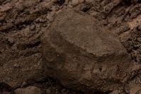 Braunkohle (Symbolbild)
