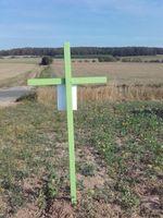 Die Botschaft hinter den grünen Kreuzen: #grüneKreuze ist eine stumme Protestaktion von Bäuerinnen und Bauern