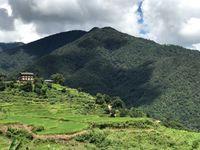 100 Prozent Biostaat: Keine chemischen Dünger und Pestizide in Sikkim