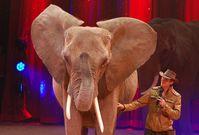 """Tierlehrer Erwin Frankello im Heilbronner Weihnachtscircus (Dezember 2014) / Bild: """"obs/Aktionsbündnis """"Tiere gehören zum Circus""""/Dirk Candidus"""""""