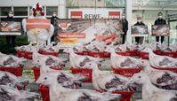 Die Mehrheit der Hühner, deren Fleisch Rewe verkauft, hat nur etwa die Fläche eines Rewe-Körbchens zum Leben.Bild: Albert Schweitzer Stiftung Fotograf: Timo Stammberger Photography