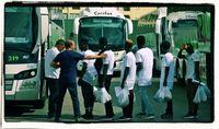 Einwanderer reisen mit Bussen ein (Symbolbild)