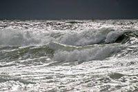PETA fordert Respekt für Ozeane und Meeresbewohner. Bild: Noop1958/Wikimedia