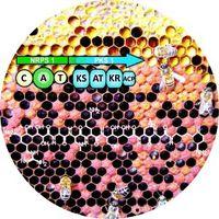 Neueste Erkenntnisse über Paenilamicine machen Hoffnung zur Bekämpfung der Faulbrut, einer Bienenseu Quelle: (c) Wiley-VCH (idw)