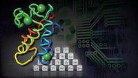 Modell des Proteins Lanmodulin.