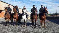 Pferde und Reiter fühlen sich in der neuen und modernen Reiterstaffel in Stahnsdorf wohl.