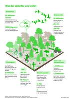 Am 21. März ist Tag des Waldes. Er wurde 1971 von der Food & Agriculture Organization of the United Nations (FAO) ins Leben gerufen, um auf die Bedeutsamkeit des Waldes aufmerksam zu machen.