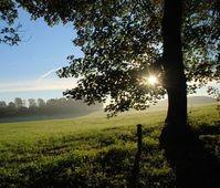 Sonnenaufgang: Natur stärkt die Psyche.