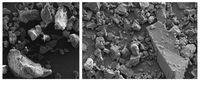 Mikroplastik aus Peeling-Produkten (li.) und gemahlenes Karnaubawachs (re.) haben ähnliche Eigenscha Quelle: Fraunhofer UMSICHT (idw)