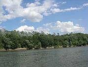 Wertvoller Lebensraum für eine Vielzahl seltener Pflanzen- und Tierarten: Der frei mäandrierende Flusslauf der Save. Bild: EuroNatur