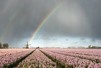 Bild: WetterOnline