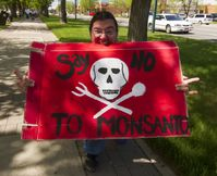 March Against Monsanto in Lethbridge Alberta