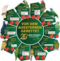 """Die Stiftung Loro Parque Fundación rettet 10 Papageienarten vor dem Aussterben Bild: """"obs/Loro Parque/Loro Parque Fundación"""""""