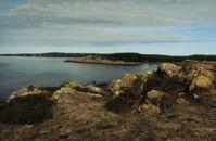 Schwedische Westküste bei Halmstad