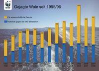 In 2008 wurden von Island, Norwegen und Japan über 1500 Wale erlegt - trotz des internationalen Moratoriums. Grafik: obs/WWF World Wide Fund For Nature