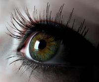 Auge: Gesundheitszustand via Smartphone erhoben. Bild: Spreckelmeyer/pixelio.de
