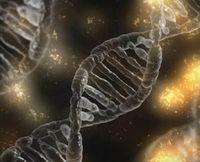DNA: Viele Faktoren lösen Tourette aus.
