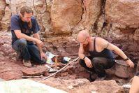 Auf der wissenschaftlichen Grabung in Chemnitz Hilbersdorf legten Ralph Kretzschmar (rechts) und Volker Annacker (links) 2010 die letzten Schichten frei. Bild: Tietz/Museum für Naturkunde Chemnitz (idw)