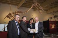 Von links: Prof. Dr. Haszprunar, PD Dr. Mike Reich, Raimund Albersdörfer, Michael Völker. Bild: Axel Schmidt, Dinosaurier Museum Altmühltal