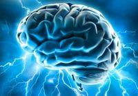 Gehirn: Wissen wird in der Cloud gesammelt. Bild: flickr.com/Allan Ajifo