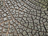 Trocken: Zum Glück gibt es Studien die die Trockenheit dieses Jahr belegen (Symbolbild)