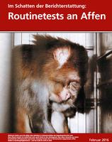 "Bild: Screenshot ""Im Schatten der Berichterstattung: Routinetests an Affen"""