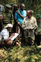 WCS-Forscher Deo Kujirakwinja (Mitte) bildet Zensus-Teilnehmer darin aus, wie sie Daten zu Gorilla-Nestern erheben können. Die Forscher berechnen die Bevölkerungsdichte der Gorillas, indem sie deren Nester und Kothaufen zählen. Quelle: A. Plumptre/Wildlife Conservation Society (idw)