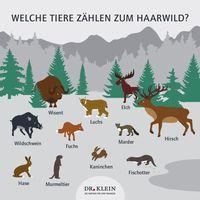 """Wildwechsel: Wer gehört zum Haarwild? Bikd: """"obs/Dr. Klein & Co. Aktiengesellschaft/Dr. Klein & Co. AG"""""""