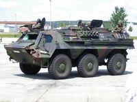 "Transportpanzer 1 ""Fuchs"""