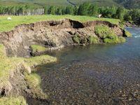 Auenlehm: Uferböschung des Kananaskis Rivers in den Kanadischen Rocky Mountains mit abgelagerten kohlenstoffreichen Hochflutsedimenten. Quelle: © Foto: Thomas Hoffmann (idw)