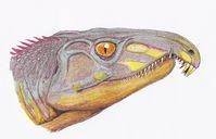 Kopfrekonstruktion von Archosaurus rossicus aus dem obersten Perm der zentralrussischen Oblast Wladimir