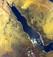 Satellitenbild des Roten Meeres