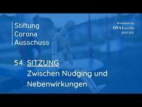 """Bild: Screenshot Video: """"Sitzung 54: Zwischen Nudging und Nebenwirkungen"""" (https://youtu.be/6wlvPBg4loM) / Eigenes Werk"""
