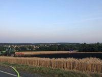 Abgebranntes Getreidefeld Bild: Polizei Mittelhessen