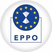 Emblem der Europäischen Staatsanwaltschaft