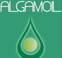 Algamoil: Der neue Treibstoff überzeugt in ersten Tests. Bild: youtube.com
