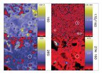 Im Bild (b) erkennt man als Hotspot ein etwa 130 Nanometer großes Silikat-Sternenstaubkorn. Viele Sternenstaubkörner dieser Größe werden erst dank des verkleinerten Ionenstrahls sichtbar. Quelle: Peter Hoppe, MPIC + Nature Astronomy (idw)