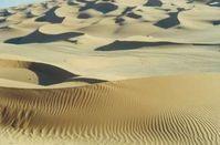 Eine zu 100% CO2 Neutrale Landschaft: Ohne CO2 gibt es praktisch kein Leben auf diesem Planeten (Symbolbild)