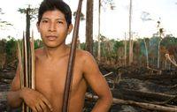 Vales Vorhaben die Carajás-Bahnlinie zu erweitern, ist eine der vielen Bedrohung für das Awá-Volk. Bild; Fiona Watson/Survival