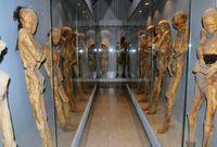 Mehrere Mumien von Guanajuato