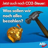 Klimadebatte: Jörg Meuthen wirft Grünen Panikmache vor