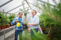 Untersuchten die Trockentoleranz von Kiefernnadeln: Privatdozent Dr. Jürgen Burkhardt und Shyam Pariyar (von rechts) vom Institut für Nutzpflanzenwissenschaften und Ressourcenschutz der Universität Bonn.