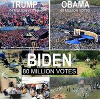 Trump hat 74 Mio. Wählerstimmen in 2020: Mehr als jeder Präsident jemals hatte. Der unbekannte und unbeliebte Biden soll dieses Ergebnis ernsthaft noch übertroffen haben? (Symbolbild)