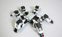 Sechsbeiniger Roboter: Neue Gangart sorgt für Aufmerksamkeit. Bild: epfl.ch